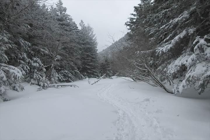 南沢河原(冬期)