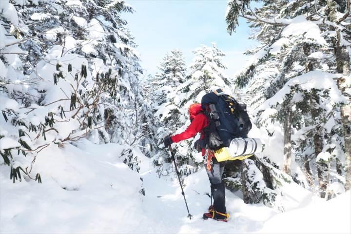 北横岳登山道2