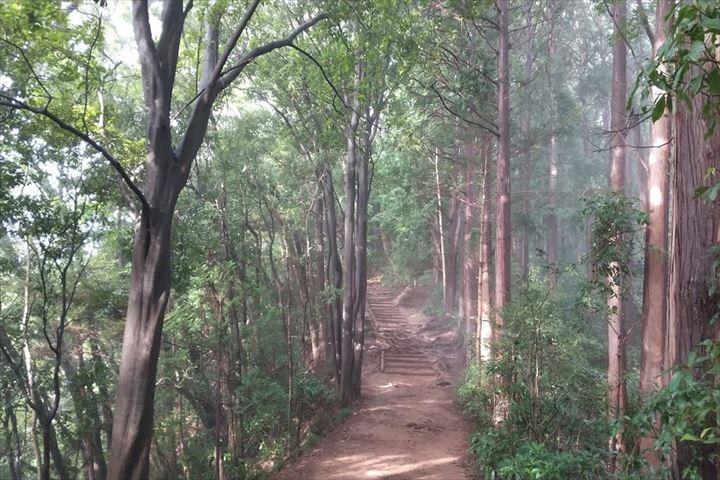 稲荷山コース階段